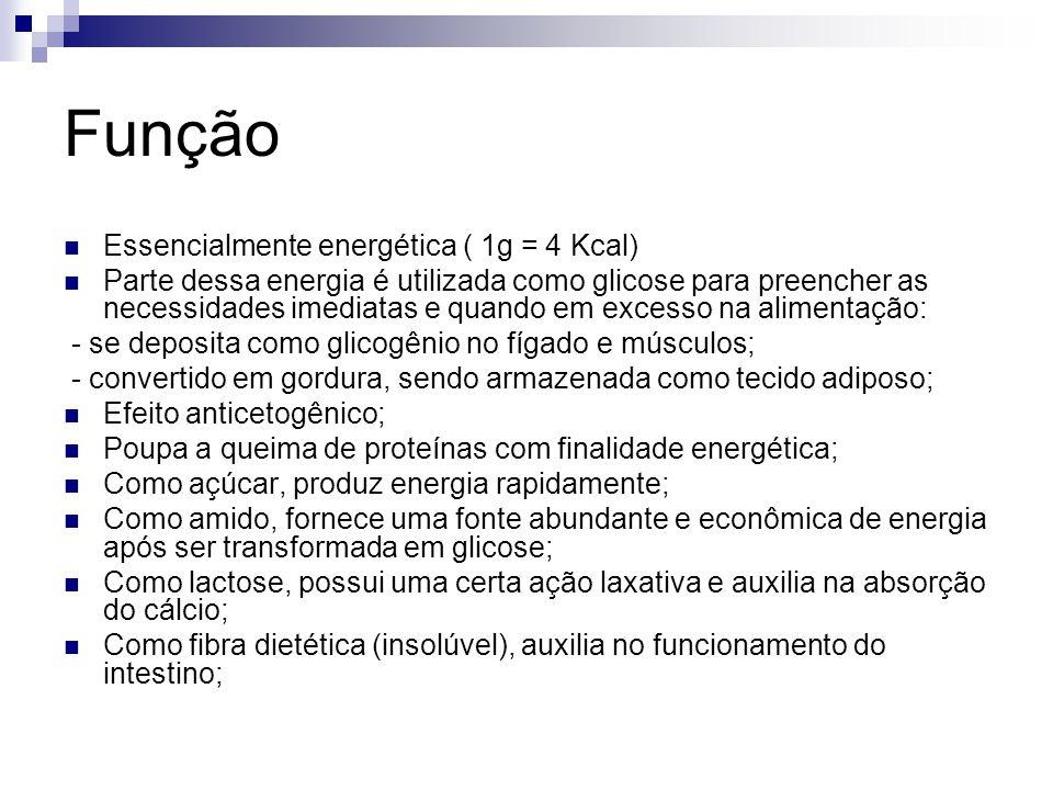 Função Essencialmente energética ( 1g = 4 Kcal)