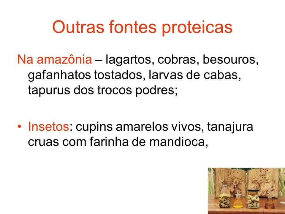 Outras fontes proteicas