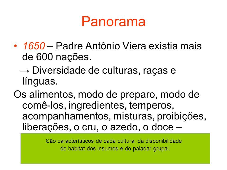 Panorama 1650 – Padre Antônio Viera existia mais de 600 nações.
