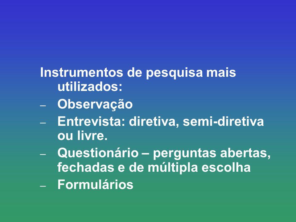 Instrumentos de pesquisa mais utilizados: