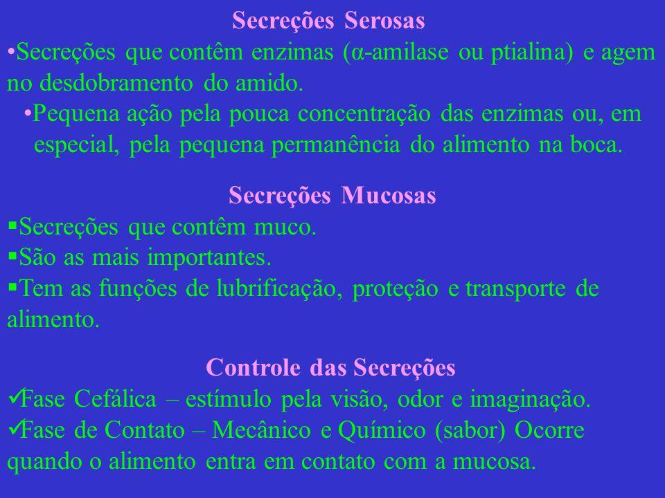Controle das Secreções