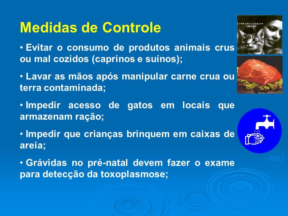 Medidas de Controle Evitar o consumo de produtos animais crus ou mal cozidos (caprinos e suínos);