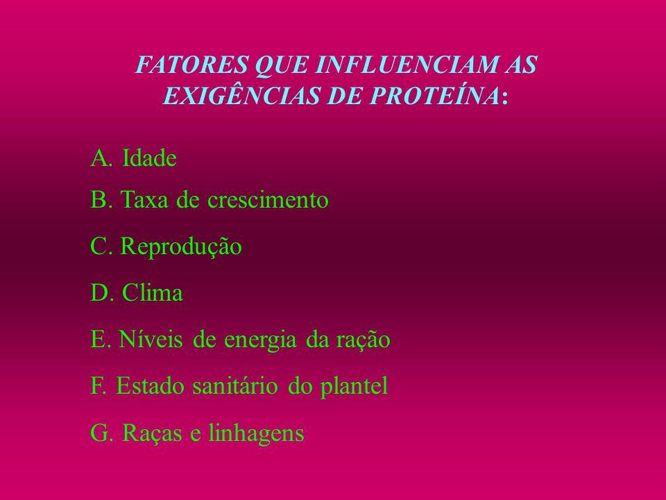 FATORES QUE INFLUENCIAM AS EXIGÊNCIAS DE PROTEÍNA: