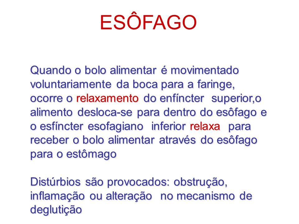 ESÔFAGO