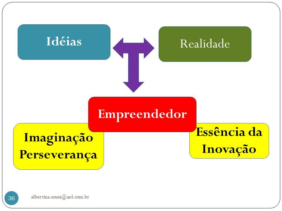 Idéias Empreendedor Imaginação Perseverança Essência da Inovação
