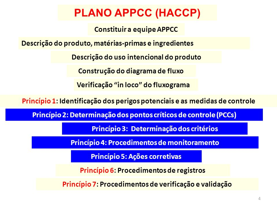 PLANO APPCC (HACCP) Constituir a equipe APPCC