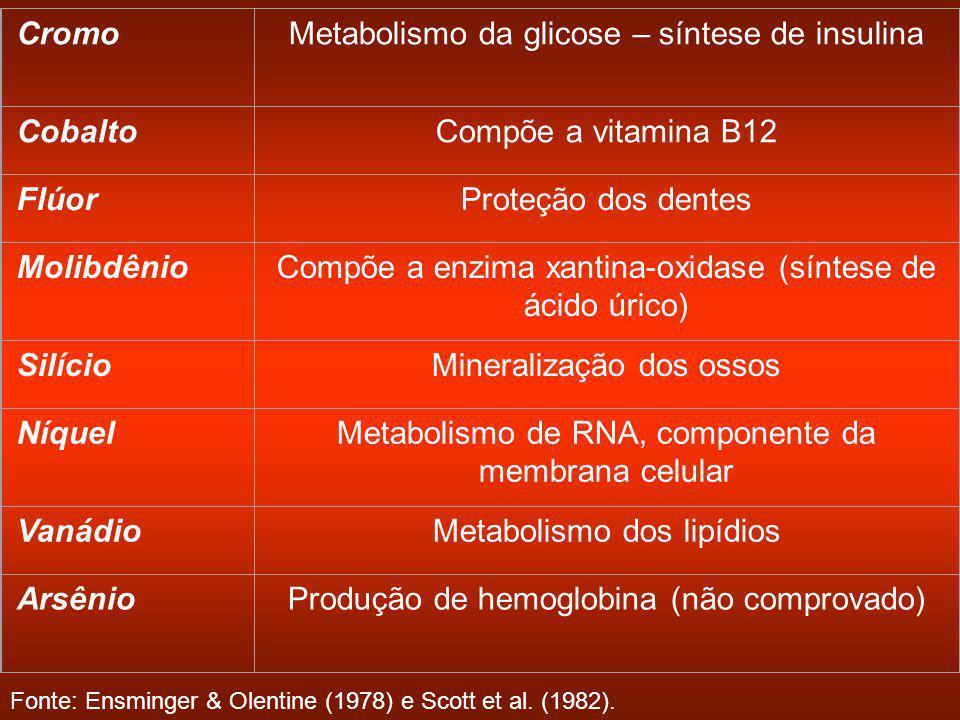 Metabolismo da glicose – síntese de insulina