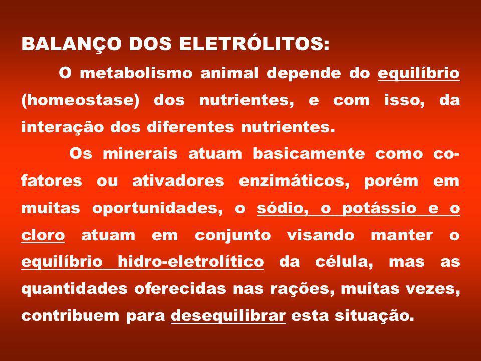 BALANÇO DOS ELETRÓLITOS: