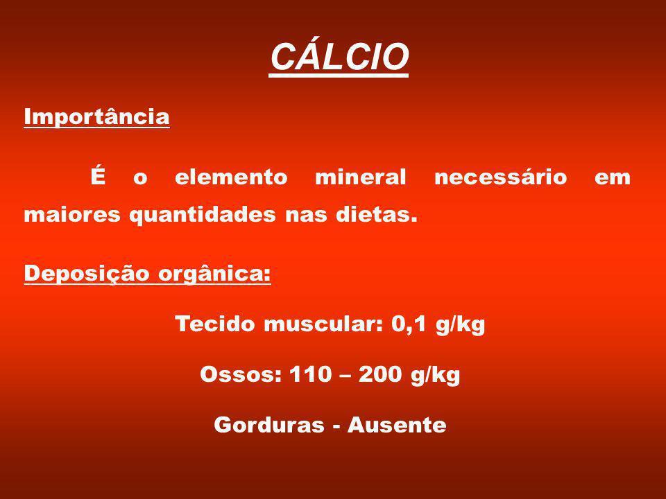 CÁLCIO Importância. É o elemento mineral necessário em maiores quantidades nas dietas. Deposição orgânica: