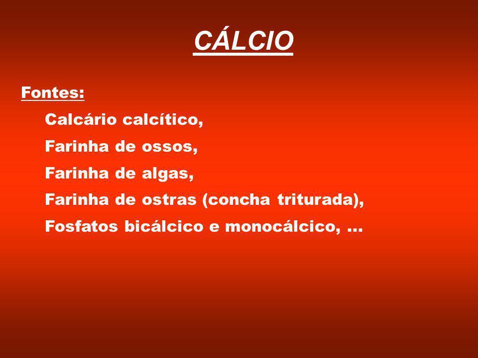 CÁLCIO Fontes: Calcário calcítico, Farinha de ossos, Farinha de algas,