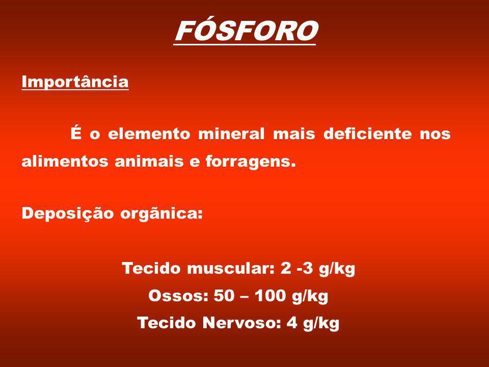 Tecido muscular: 2 -3 g/kg