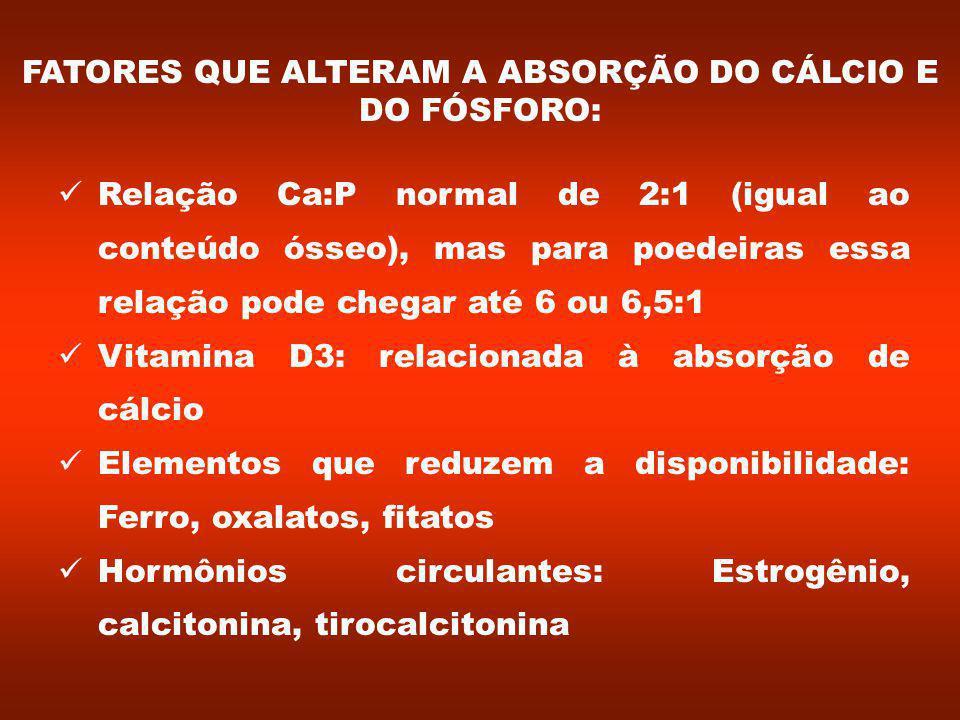 FATORES QUE ALTERAM A ABSORÇÃO DO CÁLCIO E DO FÓSFORO: