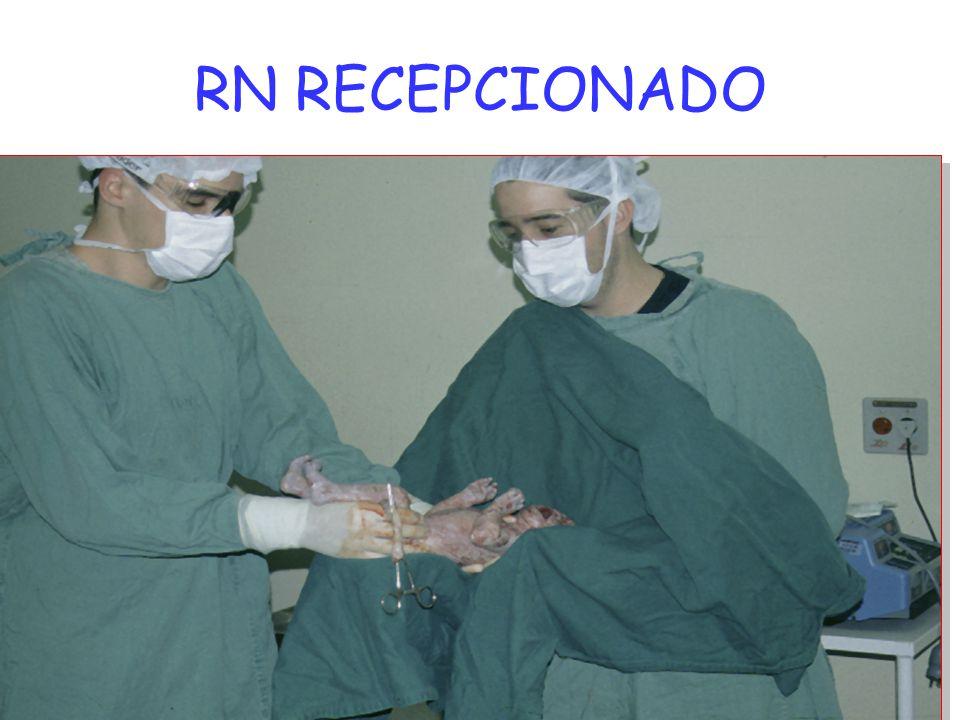 RN RECEPCIONADO