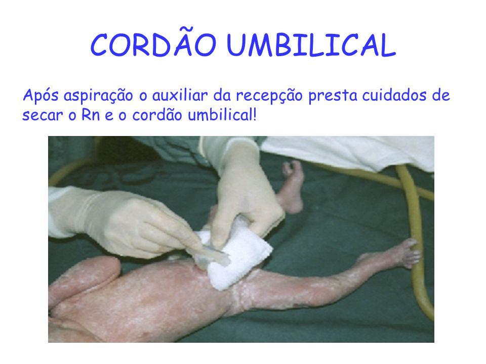 CORDÃO UMBILICAL Após aspiração o auxiliar da recepção presta cuidados de secar o Rn e o cordão umbilical!