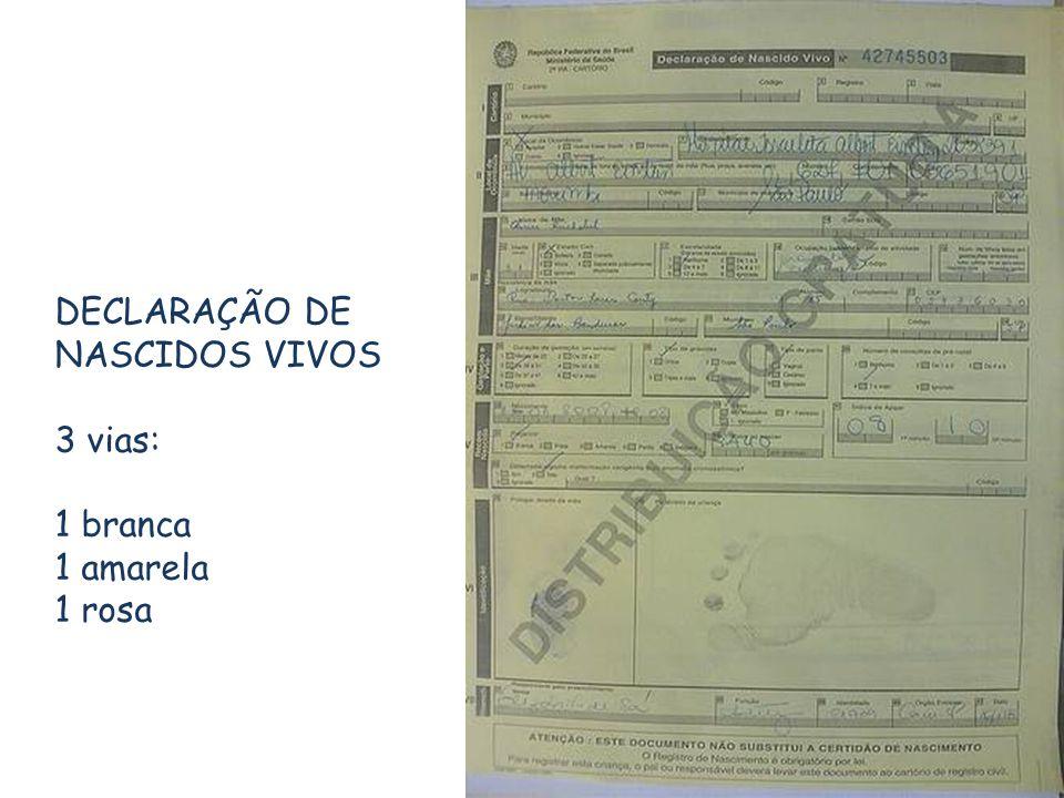 DECLARAÇÃO DE NASCIDOS VIVOS