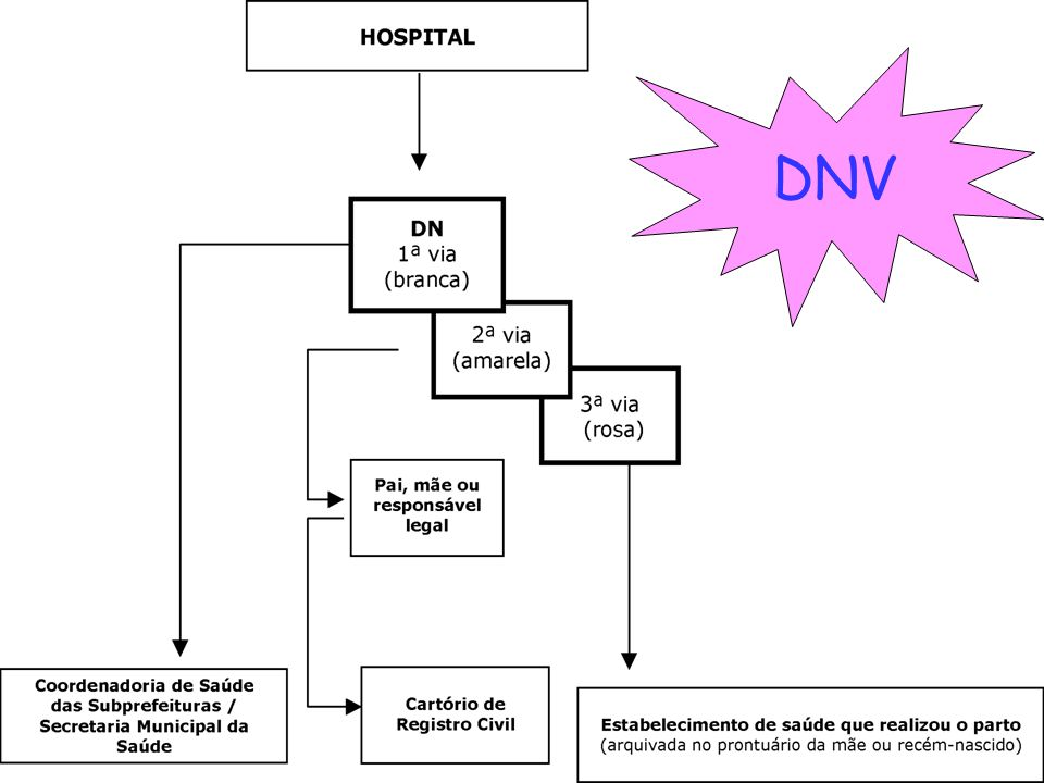 DNV DNV