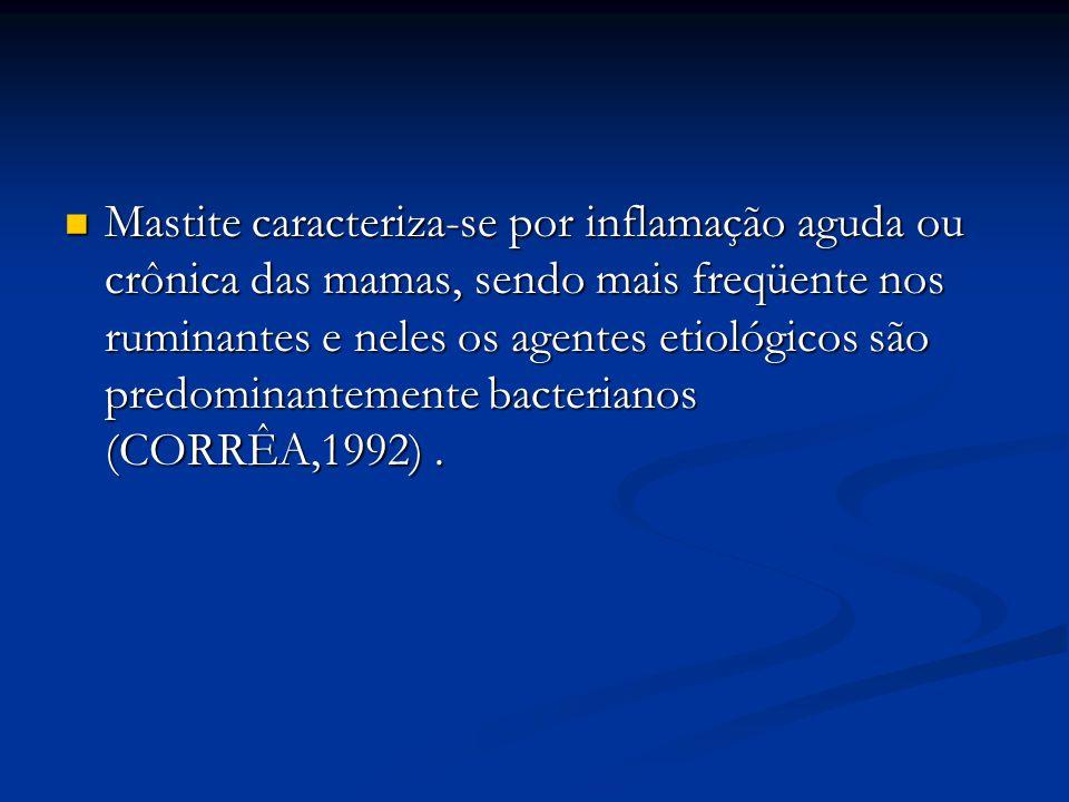Mastite caracteriza-se por inflamação aguda ou crônica das mamas, sendo mais freqüente nos ruminantes e neles os agentes etiológicos são predominantemente bacterianos (CORRÊA,1992) .