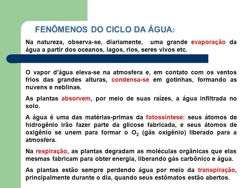 FENÔMENOS DO CICLO DA ÁGUA: