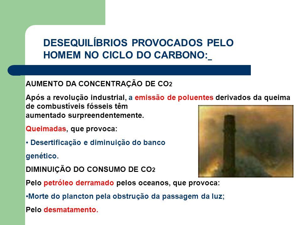 DESEQUILÍBRIOS PROVOCADOS PELO HOMEM NO CICLO DO CARBONO: