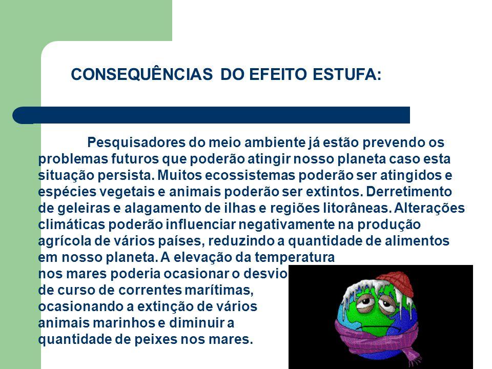 CONSEQUÊNCIAS DO EFEITO ESTUFA: