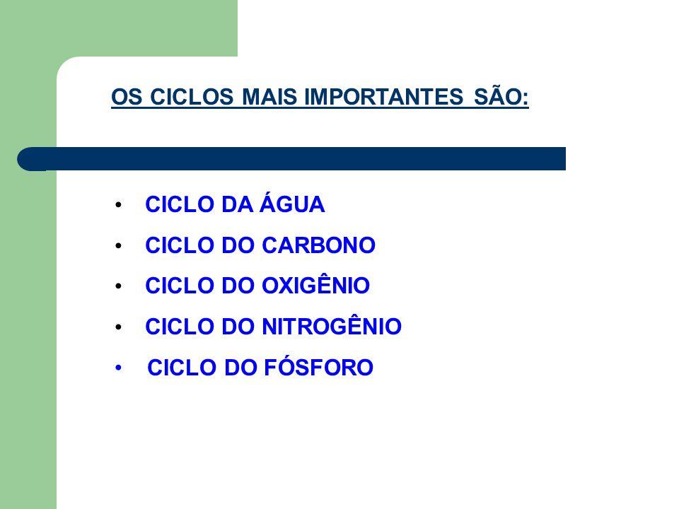 OS CICLOS MAIS IMPORTANTES SÃO: