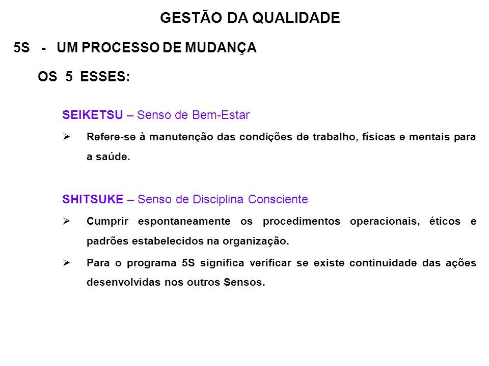 GESTÃO DA QUALIDADE 5S - UM PROCESSO DE MUDANÇA OS 5 ESSES: