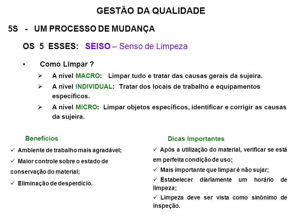 GESTÃO DA QUALIDADE 5S - UM PROCESSO DE MUDANÇA