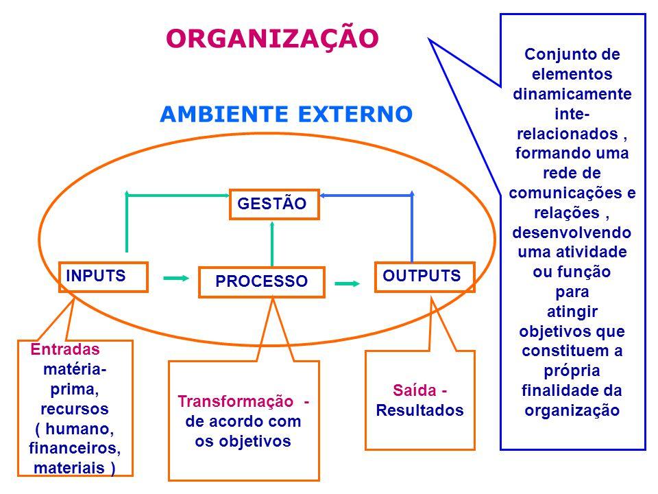 ORGANIZAÇÃO AMBIENTE EXTERNO