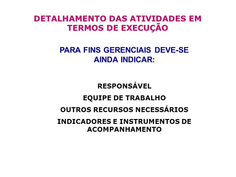 DETALHAMENTO DAS ATIVIDADES EM TERMOS DE EXECUÇÃO
