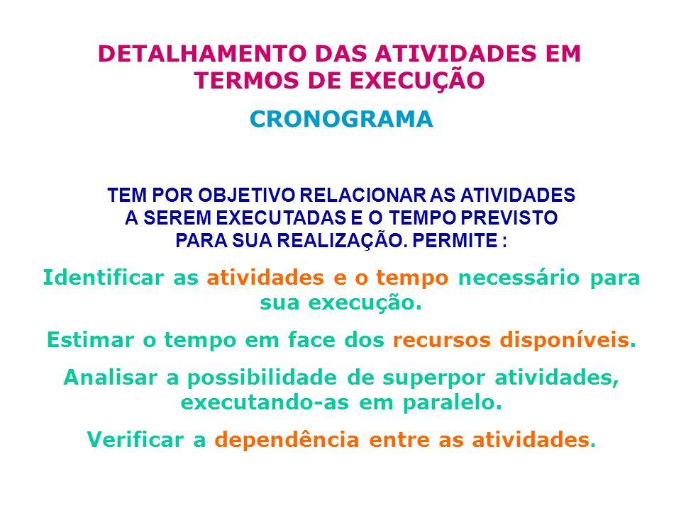 DETALHAMENTO DAS ATIVIDADES EM TERMOS DE EXECUÇÃO CRONOGRAMA