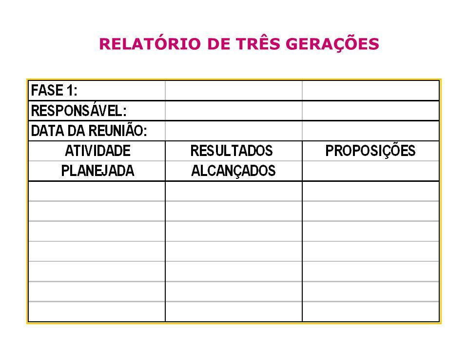 RELATÓRIO DE TRÊS GERAÇÕES