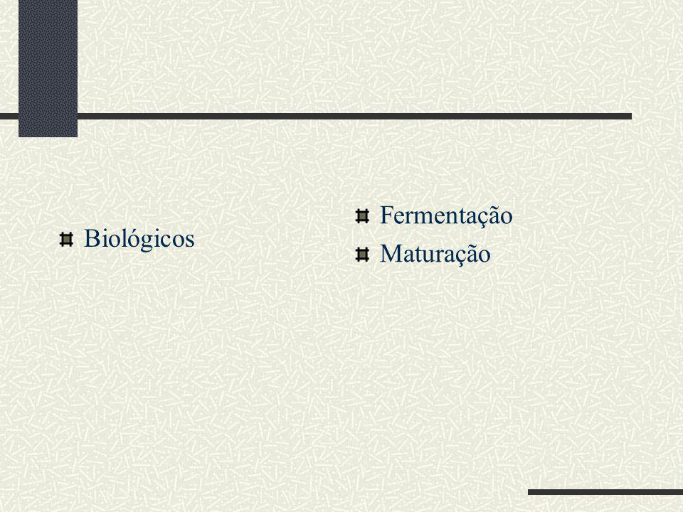 Fermentação Maturação Biológicos