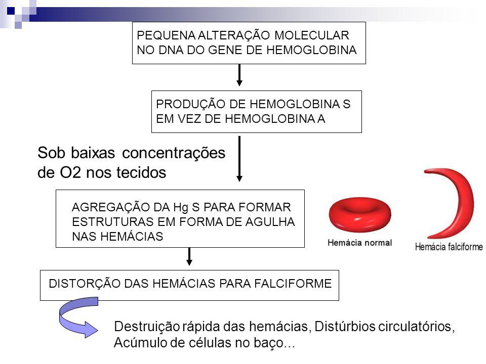 Sob baixas concentrações de O2 nos tecidos