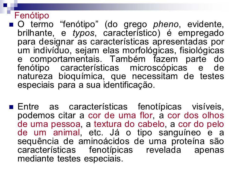 Fenótipo