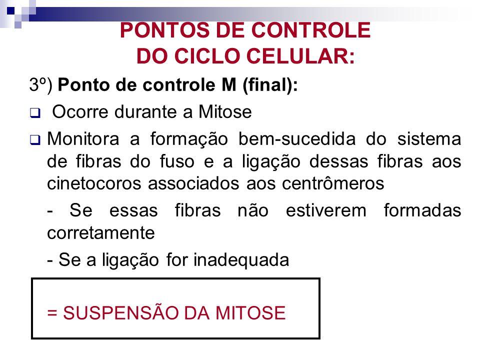 PONTOS DE CONTROLE DO CICLO CELULAR: