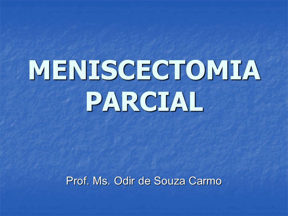 MENISCECTOMIA PARCIAL