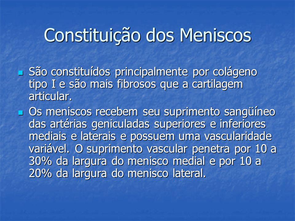 Constituição dos Meniscos