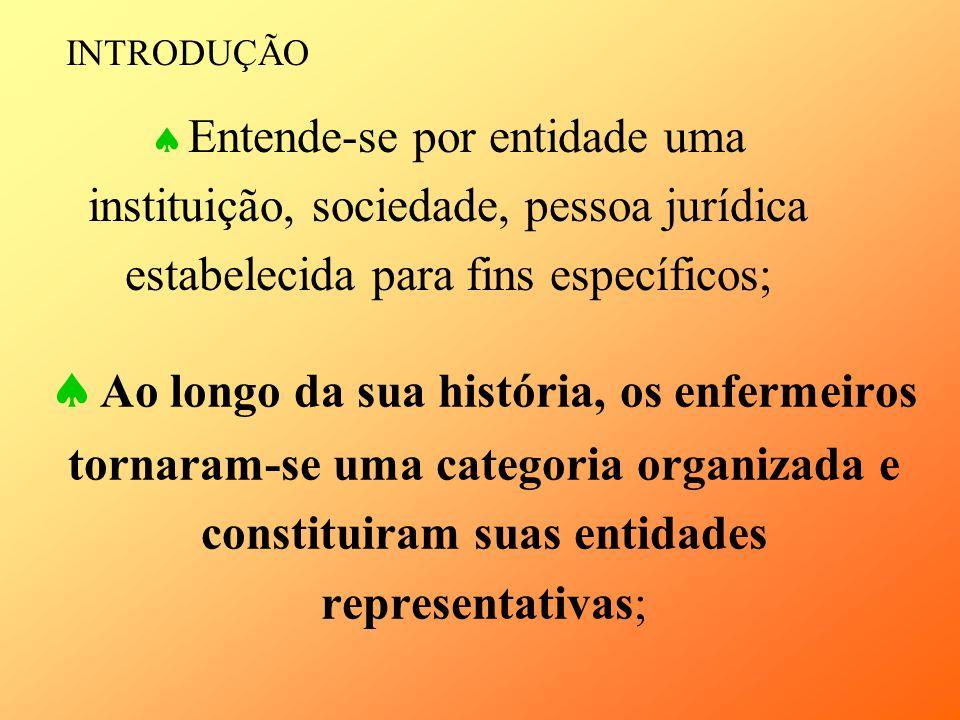 INTRODUÇÃO Entende-se por entidade uma instituição, sociedade, pessoa jurídica estabelecida para fins específicos;