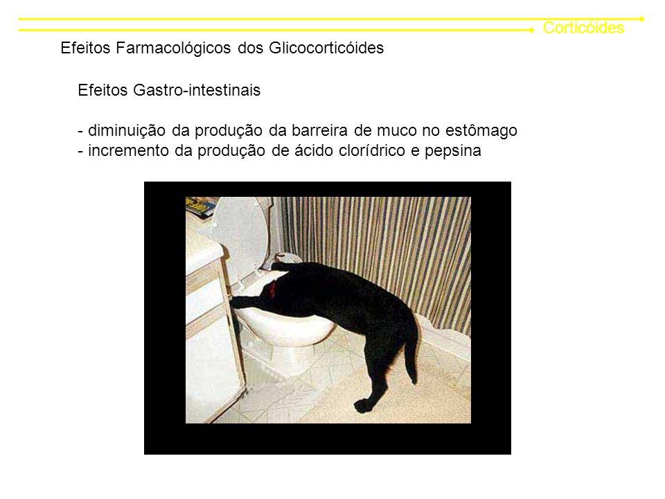 Corticóides Efeitos Farmacológicos dos Glicocorticóides. Efeitos Gastro-intestinais. diminuição da produção da barreira de muco no estômago.