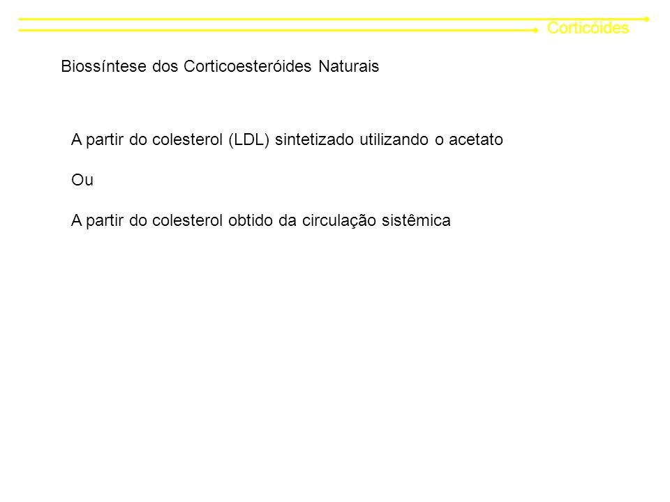 Corticóides Biossíntese dos Corticoesteróides Naturais. A partir do colesterol (LDL) sintetizado utilizando o acetato.