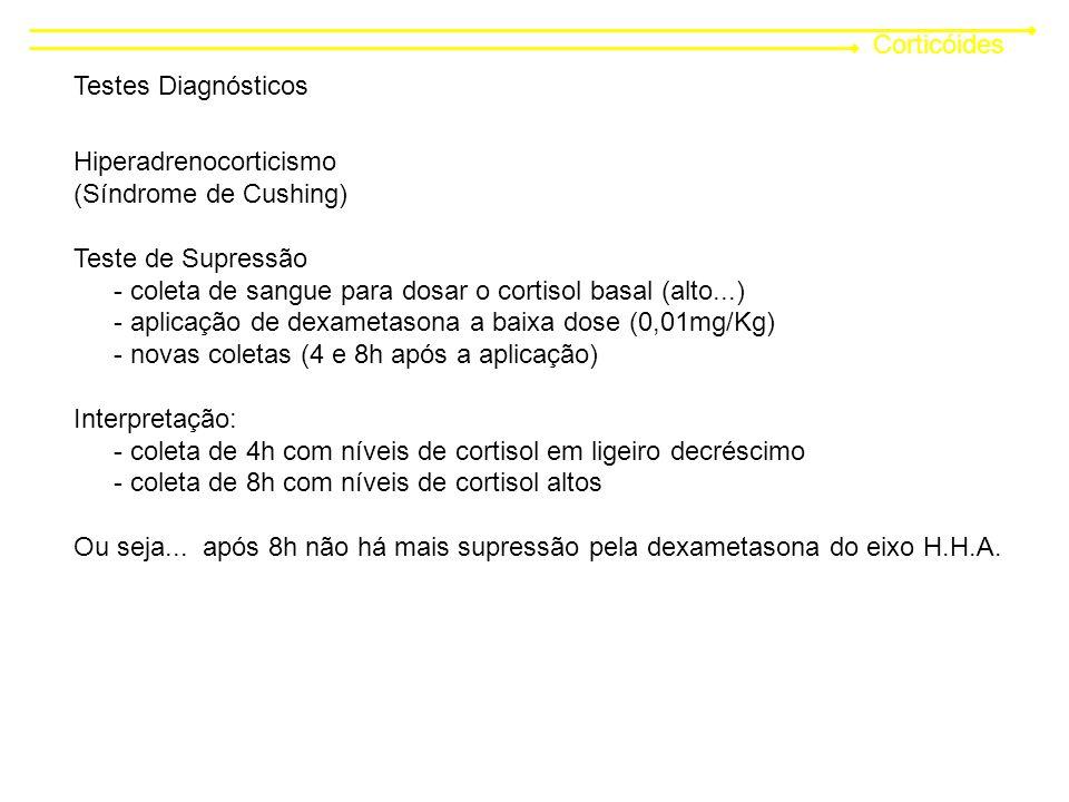 Corticóides Testes Diagnósticos. Hiperadrenocorticismo. (Síndrome de Cushing) Teste de Supressão.