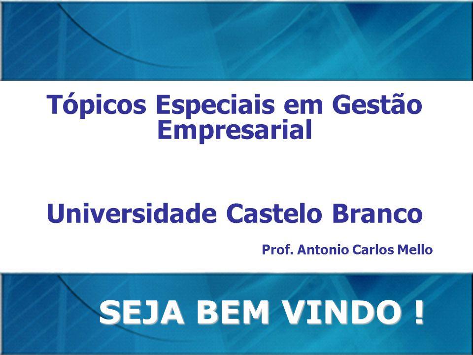 Tópicos Especiais em Gestão Empresarial Universidade Castelo Branco