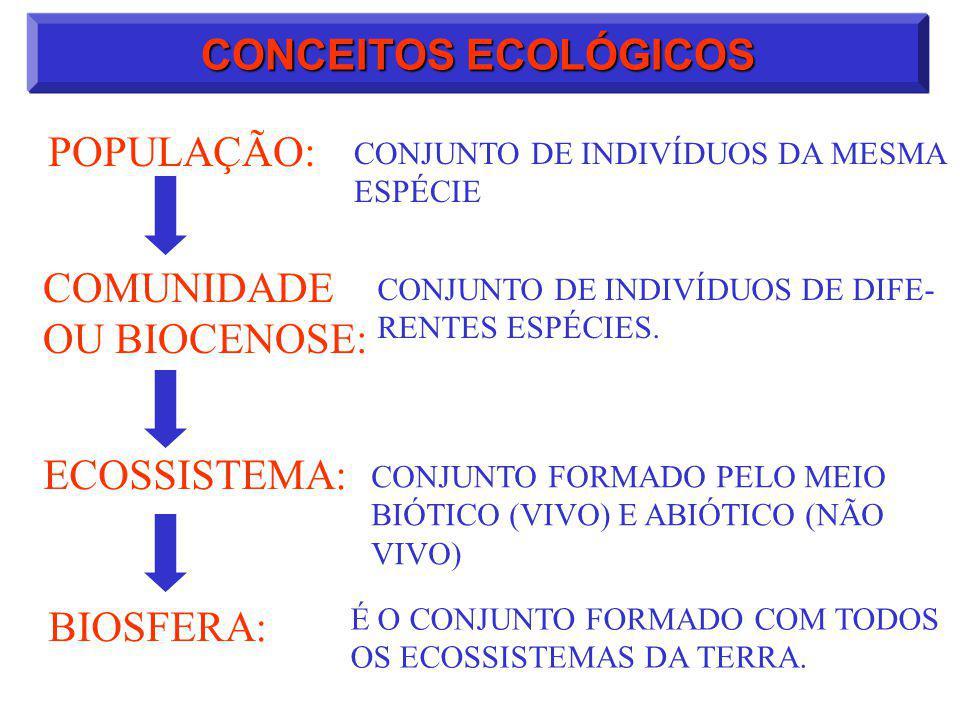 CONCEITOS ECOLÓGICOS POPULAÇÃO: COMUNIDADE OU BIOCENOSE: ECOSSISTEMA: