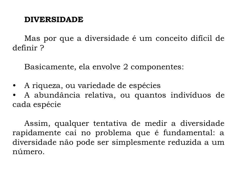 DIVERSIDADE Mas por que a diversidade é um conceito difícil de definir Basicamente, ela envolve 2 componentes: