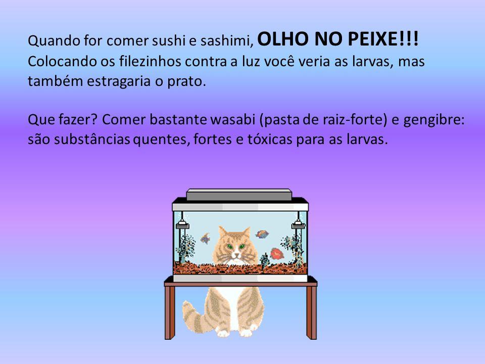 Quando for comer sushi e sashimi, OLHO NO PEIXE!!!