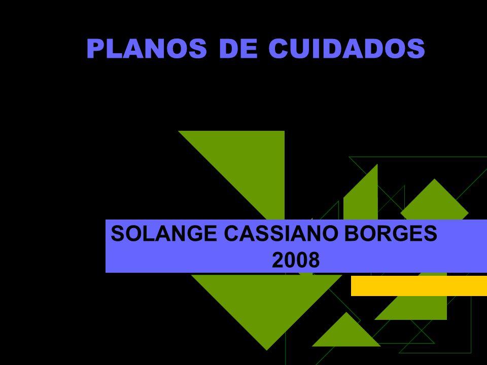 SOLANGE CASSIANO BORGES 2008