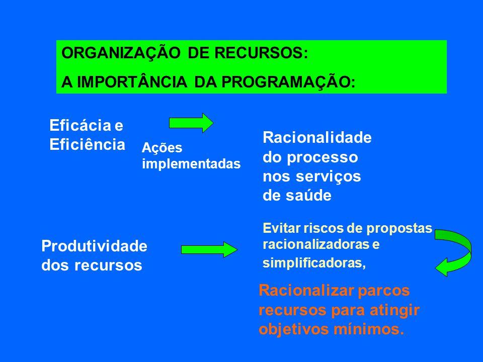 ORGANIZAÇÃO DE RECURSOS: A IMPORTÂNCIA DA PROGRAMAÇÃO: