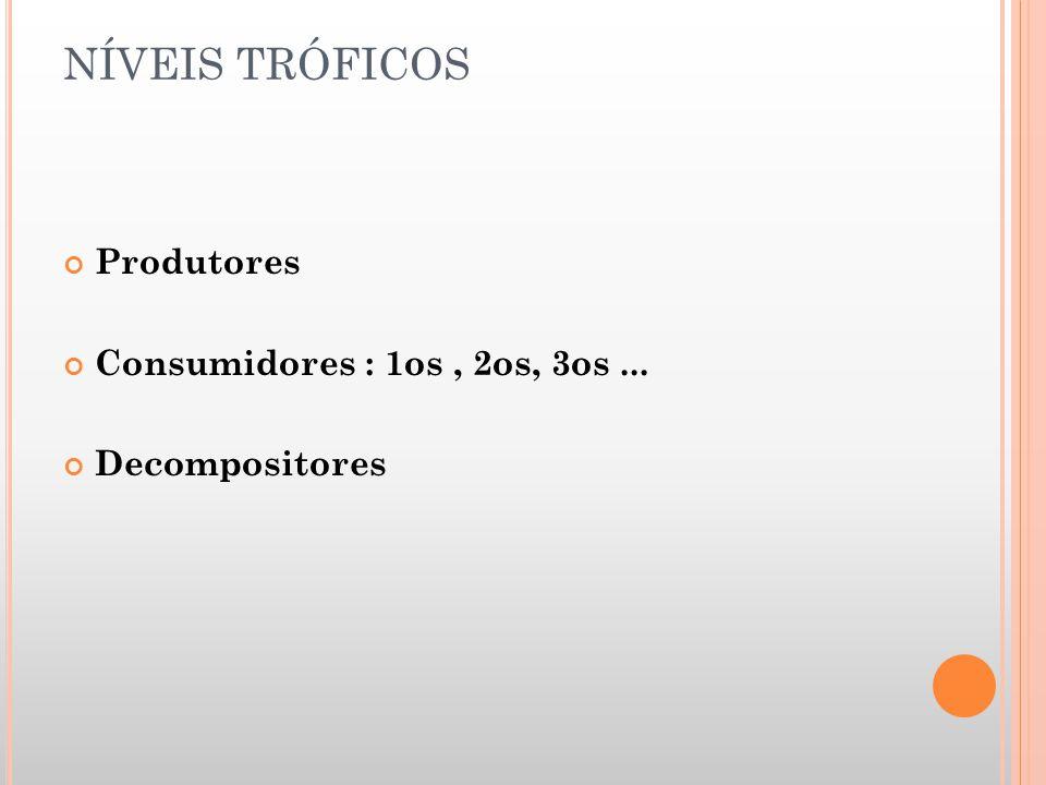 NÍVEIS TRÓFICOS Produtores Consumidores : 1os , 2os, 3os ...