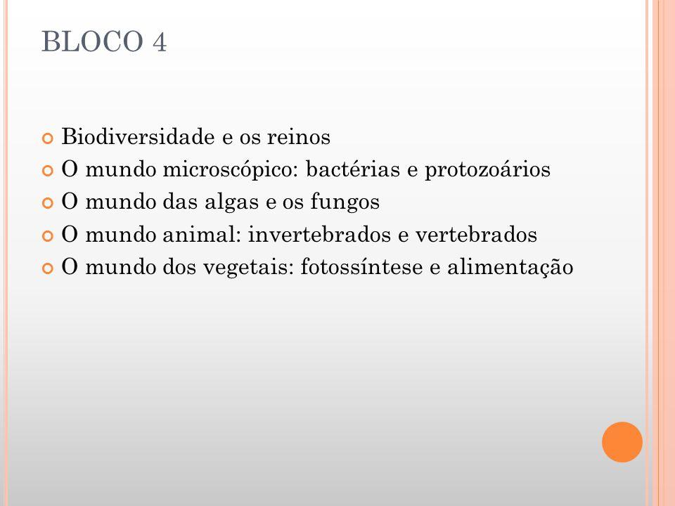 BLOCO 4 Biodiversidade e os reinos