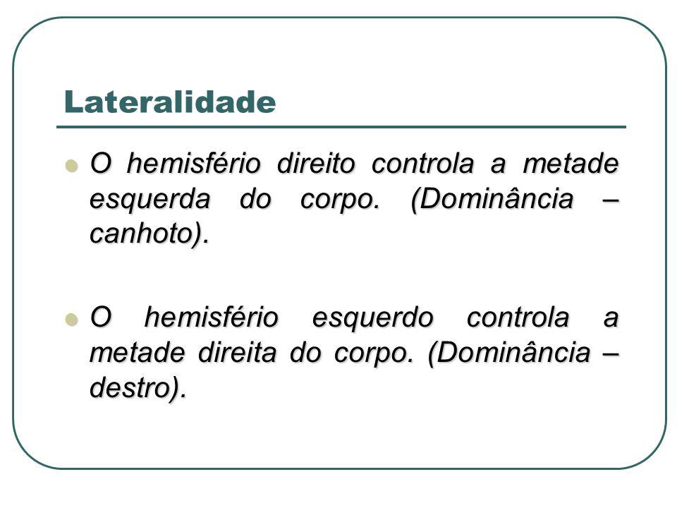 Lateralidade O hemisfério direito controla a metade esquerda do corpo. (Dominância – canhoto).